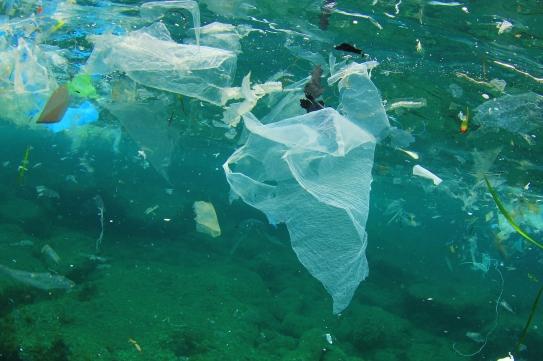 ocean-litter.jpg