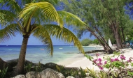 Coral-Reef-Club-Beach
