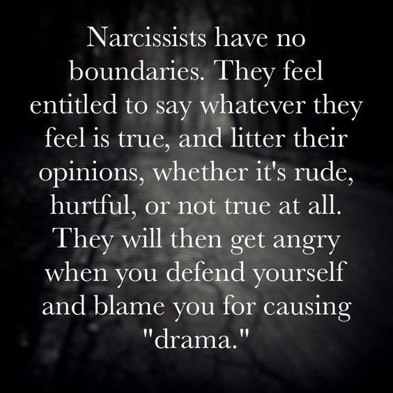 94831c2851b224578a316a7c670cb7fd--narcissistic-behavior-narcissistic-mother.jpg