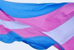 point5cc-blog-transflag