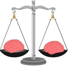 brainonscale