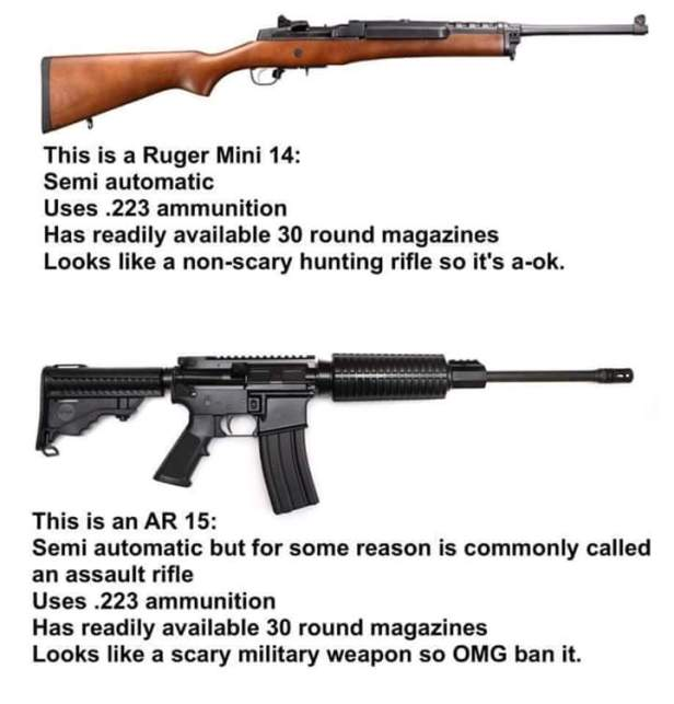 AR15 vs Mini14