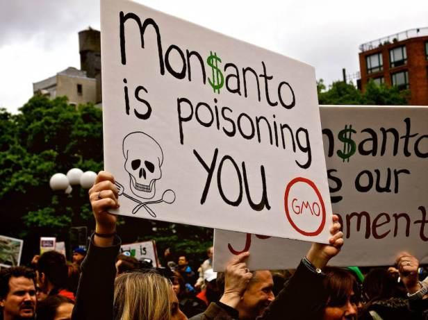 Monsanto and Poison.jpg