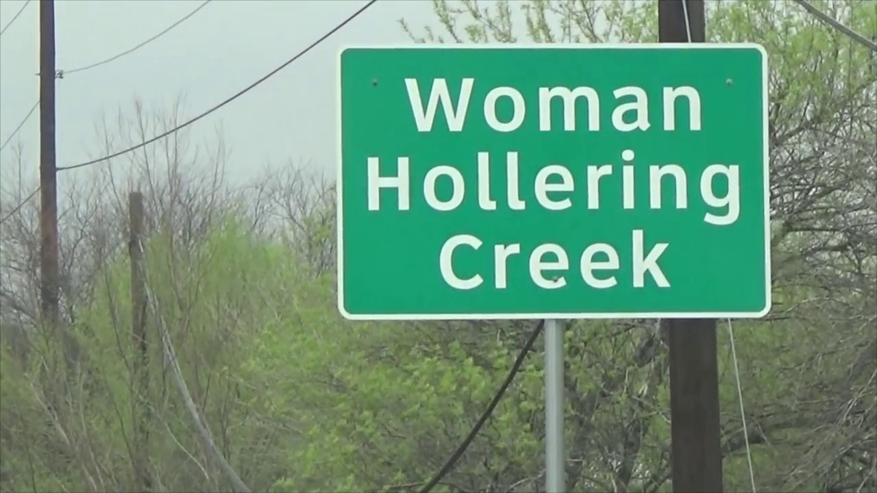 thesis statement woman hollering creek